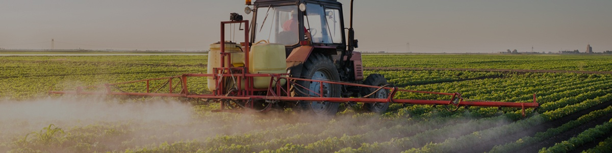 Agribusiness | Operations Consulting