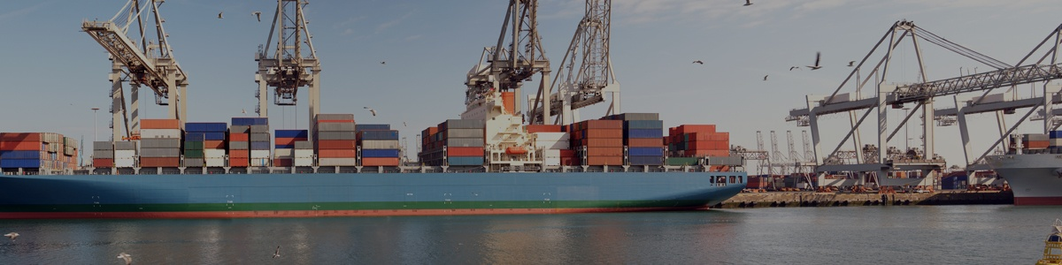 Distribution and Logistics | Operations Consulting